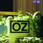 Vrăjitorul dr.OZ dezvăluie la București secretul schimbării