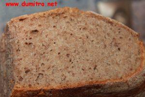 4 paine cu maia sectiune